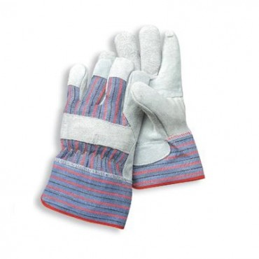 Radnor Economy Gloves 12-Pack 64057593